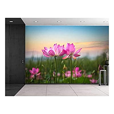Fascinating Visual, Professional Creation, Pink Lotus Flowers Looking Over The Sunset Wall Mural