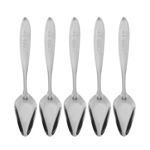 HEEPDD 5Pcs Parrot Feeding Spoon Stainless Steel Metal Bird Milk Spoons for Birds Peony Cockatiel Rabbit Hamster Small…