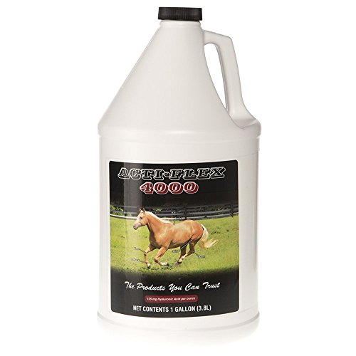 COX VETERINARY Acti Flex Joint Compound Gallon (Best Joint Supplement For Horses)