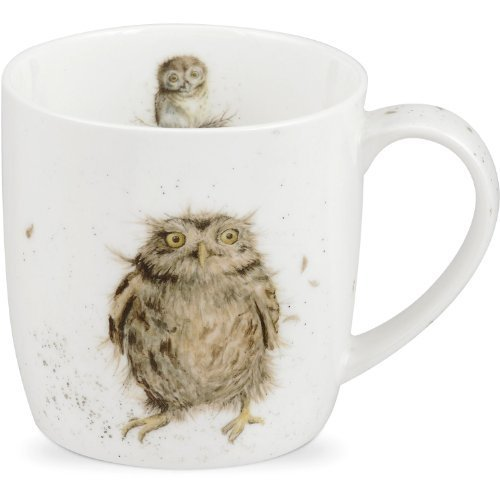 Portmeirion Wrendale What A Hoot Design Mug by