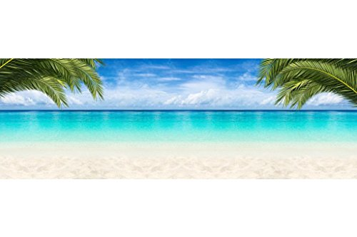 - Tropical Beach Paradise Palm Trees Ocean Panoramic Photo Seascape Poster 36x12 inch