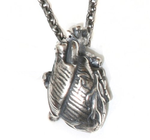 Silver Anatomical Human Heart Locket