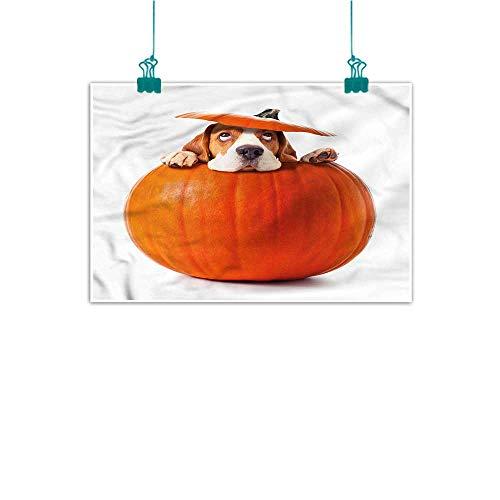 The Walking Dead Pumpkin Stencils (J Chief Sky Pumpkin,Painting Picture Prints W 36