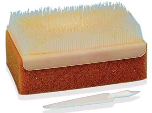 GIMA 36571 Pvp-Iodine Scrub Kit (Pack of 30)