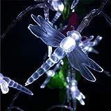 BGFHDSD Holiday Lighting Novelty Multicolor Romantic Dragonfly LED Lights Battery Wedding Decoration Lightings 2M 20LED Warm White