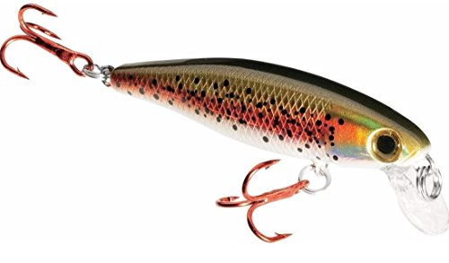Dynamic Lures Trout Fishing Lure, Multiple BB Chamber Inside, (2) - Size 10 Treble Hooks for Bass, Trout, Walleye, Carp, 1 (Rainbow Trout Bait)