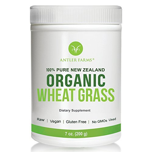 Antler Farms - 100% Pure New Zealand Organic Wheatgrass Powder, 50 servings, 200g - Raw, Vegan, Gluten Free, Nutrient Rich, High Chlorophyll Wheat Grass, NO Pesticides, NO Chemicals, NO GMOs (Grass Pines Wheat Powder)