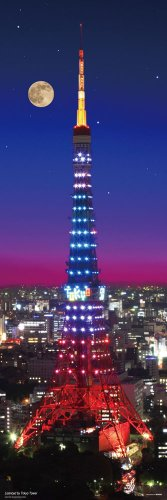 Night View of Tokyo Tower 954 Piece
