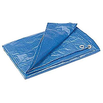 RT 12' x 14' of Blue Poly Tent Tarp: Garden & Outdoor