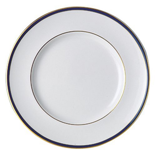 (Royal Doulton Oxford Blue 10 1/2-Inch Dinner Plate)