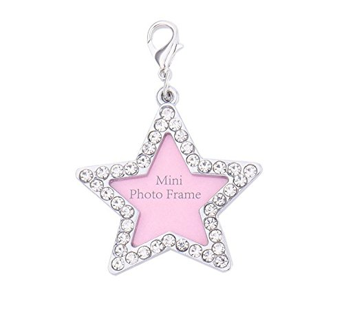 WEIYI Fashion Five-Pointed Star Stainless Steel Crystal Bling Dog Cat Pet ID Name Tag