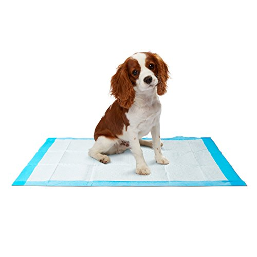 Dr. Dunley Dog & Puppy Pads, Super Absorbent, Easy Clean Up, 23″X 24″ (200 Count) Review
