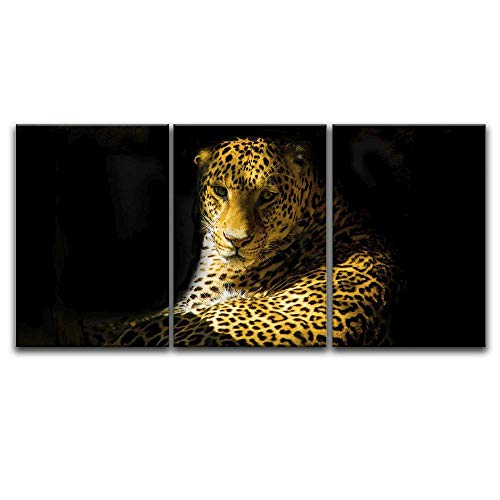 3 Panel Leopard in Black Background x 3 Panels
