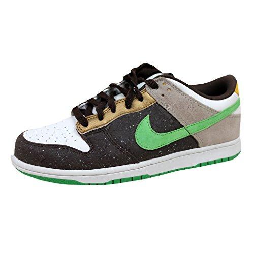 Nike 6.0 Skate (Nike 6.0 Dunk Low 6.0 Skate Shoe - Men's)