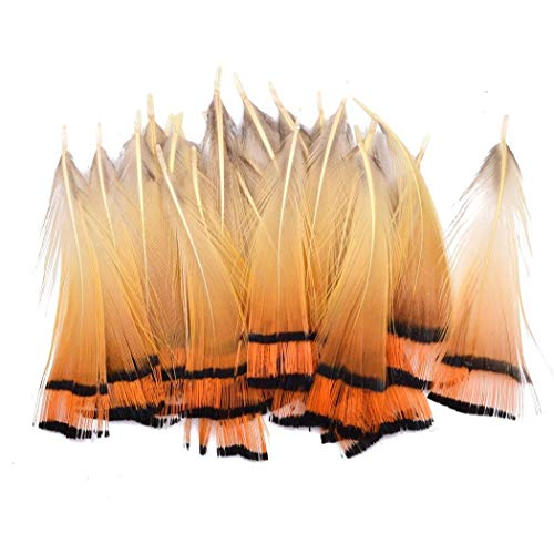 20/50pcs 5~7cm Natural Golden Pheasant Tippets Feather for Fly Tying Material - Material Tying Fly Natural