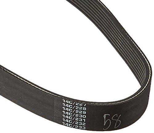 Carlisle High Performance Belt (CARLISLE 190J8 V-Ribbed Belts with 8 Ribs, J Section, Rubber, 0.736 Belt Width, 19.5