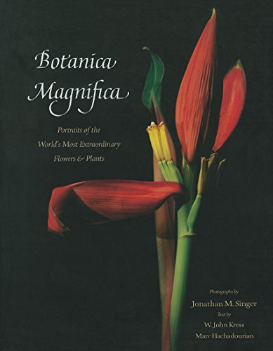 Botanica Magnifica: Portraits of the World's Most Extraordinary Flowers and Plants (Extraordinary Plants)