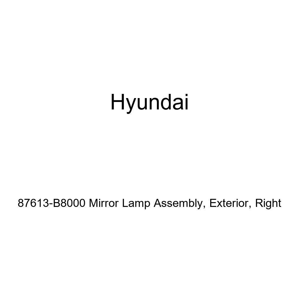 Right Genuine Hyundai 87613-B8000 Mirror Lamp Assembly Exterior