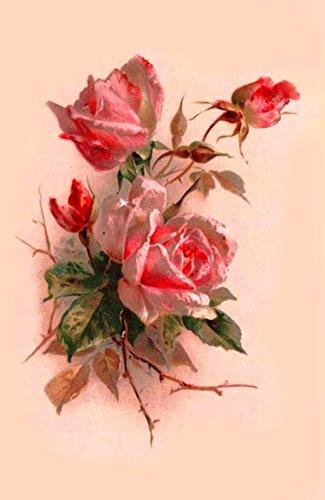"Waterslide Decals (4pcs 2.5""x3.5""each) Pink Roses FLONZ 0680 Vintage Flowers"