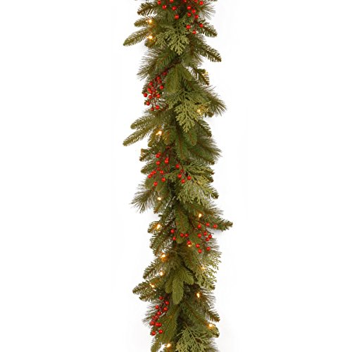National Tree 9 Foot by 12 Inch Feel Real Classical Collection Garland with Cedar Leaves, Red Berries and 100 Clear Lights (PECC3-300-9B-1)