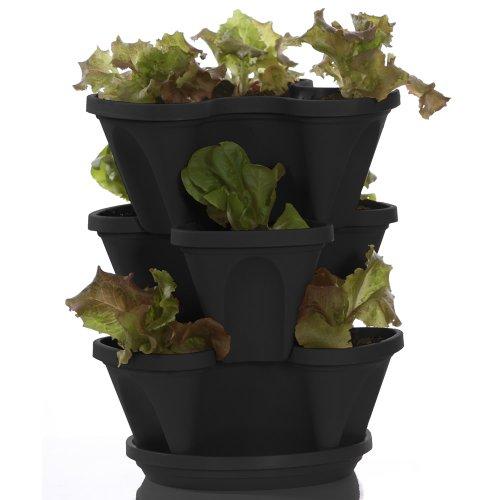 Mini Cascade Pot (Self Watering Planter - Mini Garden Stacker - Stackable - Hangable - Indoor - Outdoor - Stacking Plant & Flower Pot - Color: Black)