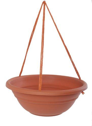Bloem MBHB151746-12 12-Pack Milano Hanging Basket/Planter, 17-Inch, Terra Cotta by Bloem