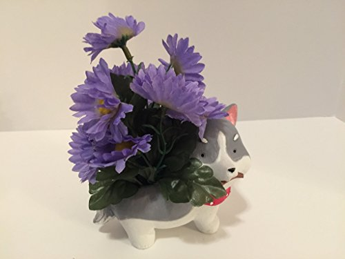 ANIMAL FUN - HUSKY - PURPLE DAISIES by Peters Partners Design