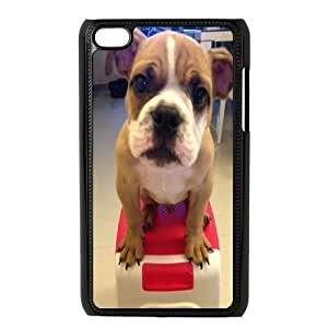 Bulldog Dog Design Cheap Custom Hard Case Cover for iPod Touch 4, Bulldog Dog iPod Touch 4 Case