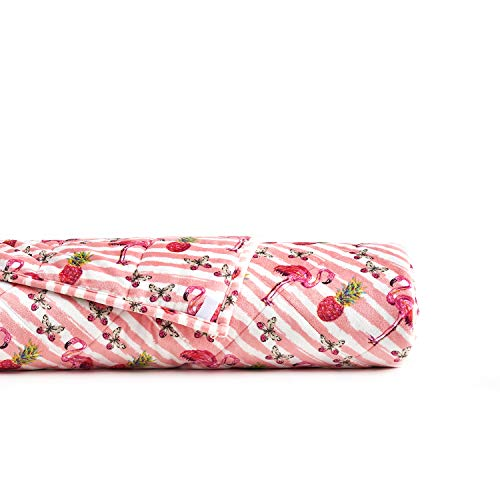 (YnM Minky Weighted Blanket,20lbs 60''x 80'' for Queen Bed, 2.0 Fuzzy Sensory Blanket, Perfect for Cold Sleeper, Flamingos Print )