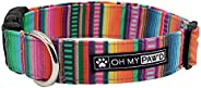 Serape Fabric Collar for Pets Size Large 1 Inch Wide and 17-25 Inches Long - Hand Made Dog Collar by Oh My Paw