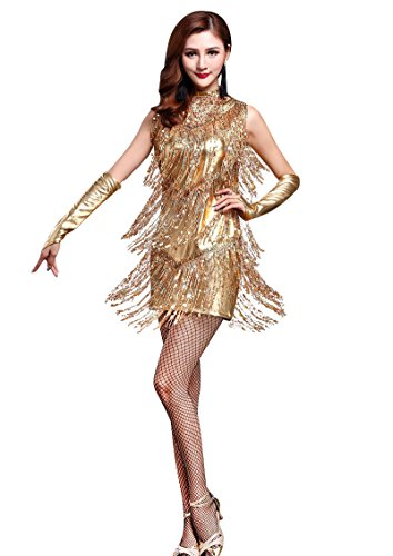 Z&X 1920s Sequin Embellished Fringe Flapper Latin Dance Dress 4 Pieces Outfits Medium (Flappers Outfits)