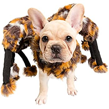 Spider Dog Costume - Cat Costume - Pet Costumes by Pet Krewe  sc 1 st  Amazon.com & Amazon.com : Spider Dog Costume - Cat Costume - Pet Costumes by Pet ...