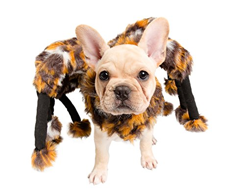 (Pet Krewe PK00201 Spider Costume for Small Dogs &)