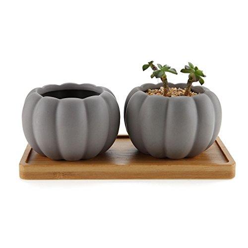 Rachel's Choice Mini 3inch Succulent Planter Ceramic Pots Pumpkin Style with Drainage Tray Matte ()