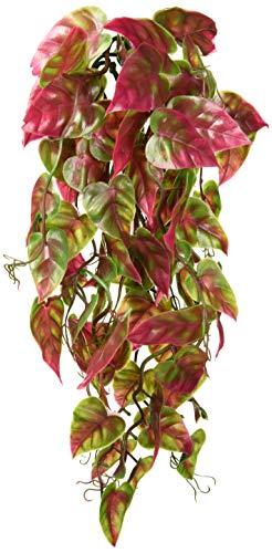 (Penn Plax Reptology Climber Vine Reptile Terrarium Plant Decor Red & Green 12inch)
