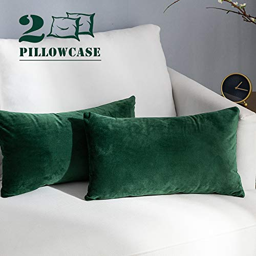 (NANPIPER Set of 2 Decorative Sofa Throw Pillow Covers 12x20 Cozy Velvet Cushion Olive Green Pillowcase for Couch and Bed )