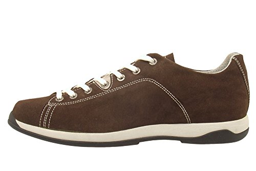 Akron 3195 en Focus Marron chaussure Suede wU6Yq