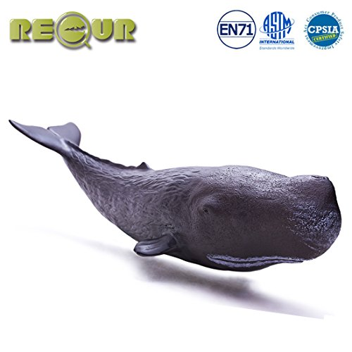 RECUR Toys 12inch Sperm Whale Figure Pool Toys, Sea Life Soft Hand-Painted Skin Texture Shark Figurine Collection-Realistic Black Sperm Whale Replica, Ideal for Collectors, Ages 3 and Up