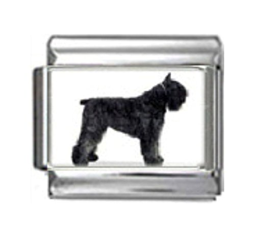 Stylysh Charms Bouvier DES Flandres Dog Photo Italian 9mm Link LinkDG097 ()