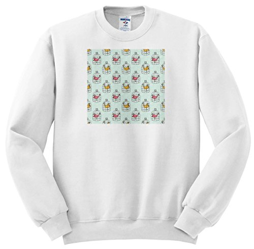 Price comparison product image 3dRose Anne Marie Baugh - Patterns - Cute Birds In Bird Cages Pattern - Sweatshirts - Youth Sweatshirt Large(14-16) (SS_265049_12)
