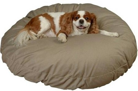 Snoozer Round Pillow Pet Bed Round, All Fabric, X-Large, Denim