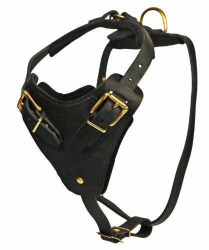 Dean and Tyler The Blade with Handle Brass Belt Style Buckles Leather Dog Harness, Black, Large - Fits Girth Size: 31-Inch to 41-Inch by Dean & Tyler (Image #3)