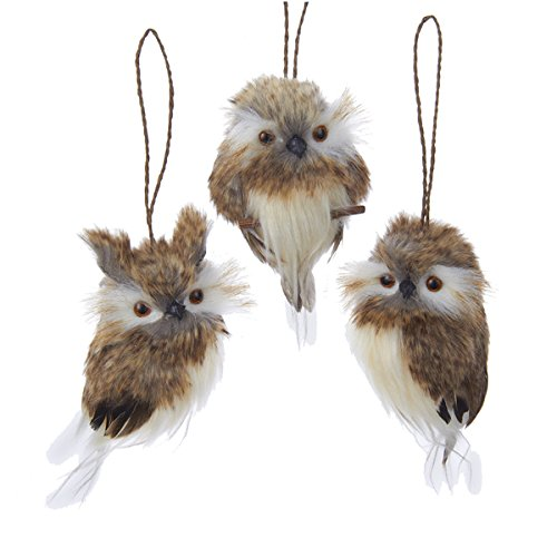How to buy the best owl ornaments for tree?