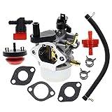 MOTOALL Carburetor Carb for Briggs & Stratton 801396 801233 801255 38584 38538 38413 38518 Insight Toro Power Clear R-TEK 2 Cycle CCR2400 CCR2450 CCR2500 CCR3000 CCR3600 CCR3650 CCR3650 Snowblower
