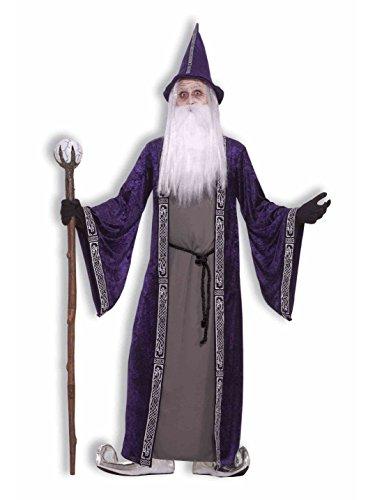 Forum Novelties Men's Wizard Adult Costume, Purple, - Witch Adult Shoes Magic