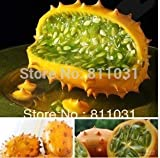 Hot selling 5pcs kiwano melon seeds, Cucumis Metuliferus, African cucumber vegetable seeds DIY home garden