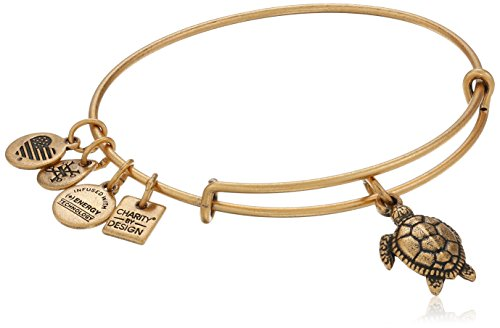 Alex and Ani Charity By Design Turtle Rafaelian Gold Bangle Bracelet