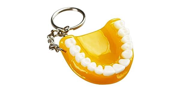 Earlywish 5pcs Llavero Anillo Dientes dentales Dentista ...