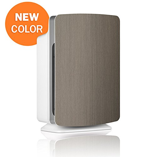 Alen BreatheSmart Customizable Air Purifier with HEPA-Pure Filter for Allergies and Dust (Weathered Gray, Pure, 1-Pack)