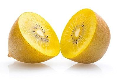 100 kiwi jaune SunGold sweet exotic N-Zealand Actinidia Chinenses Seeds